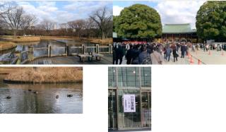 20170102明治神宮初詣と代々木公園