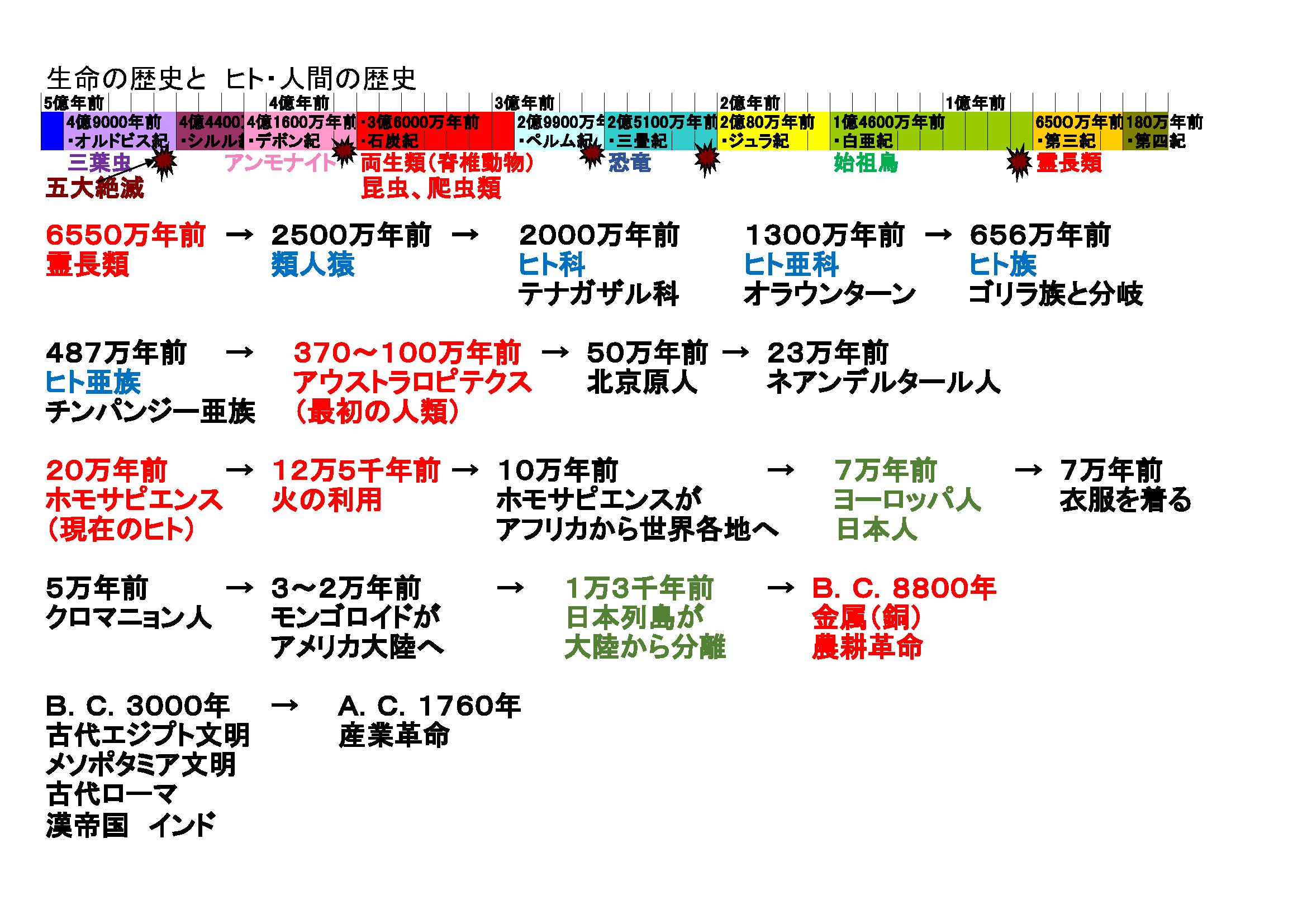 ヒトの歴史
